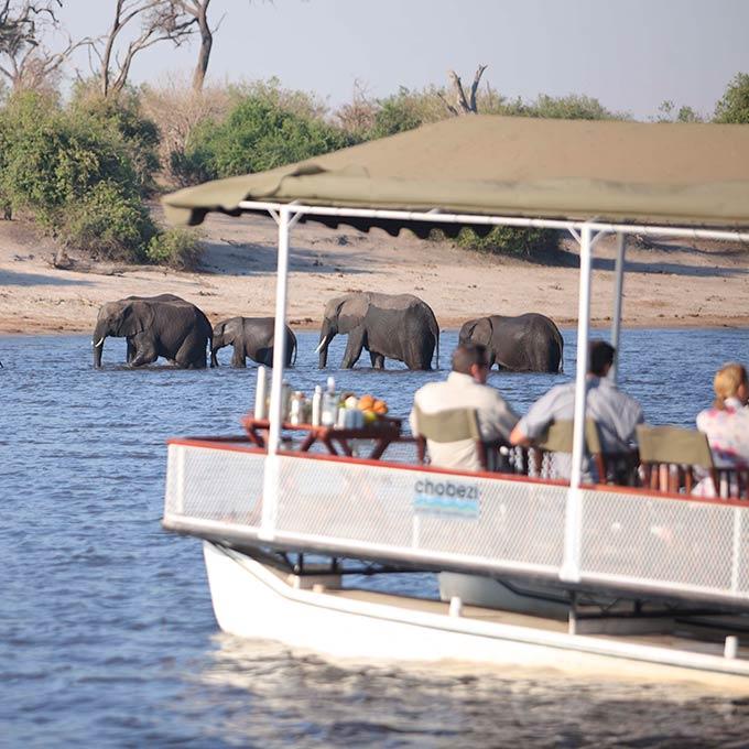 Chobe National Park For An Authentic Luxury Safari Botswana