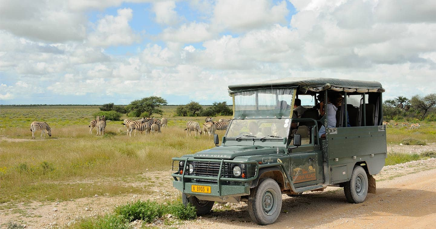 game drive safari in Chobe National Park