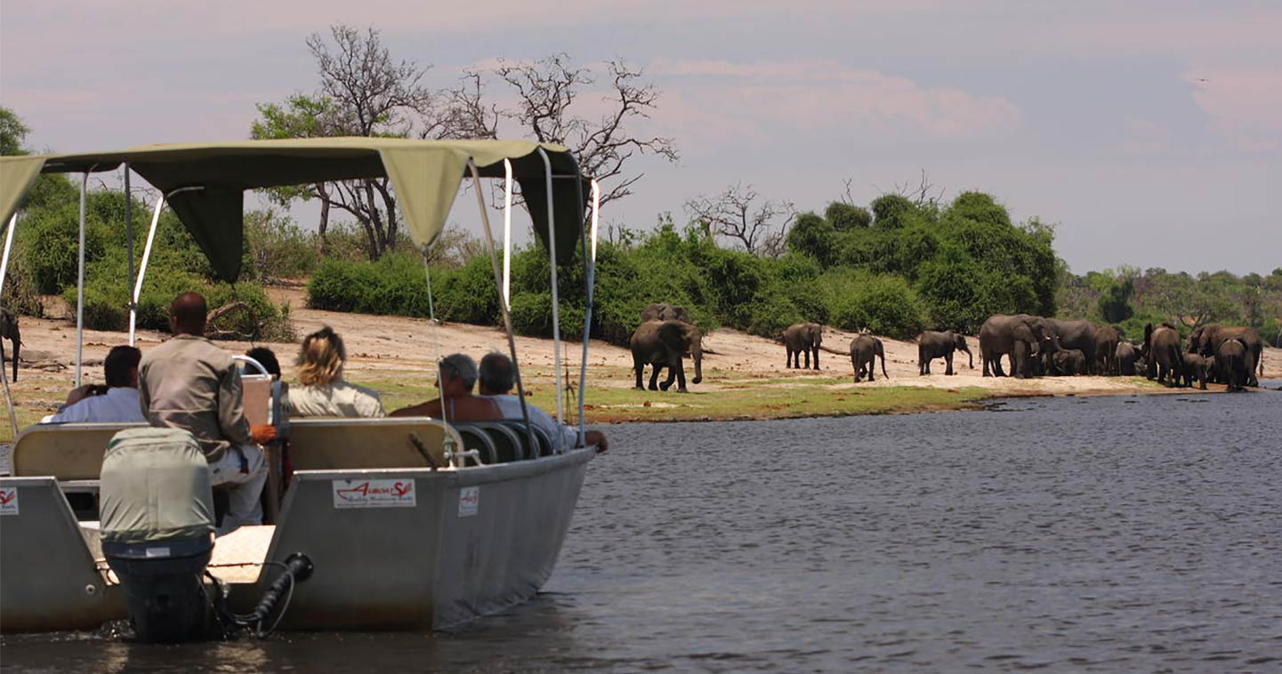 Chobe River cruise at Elephant Valley in Botswana