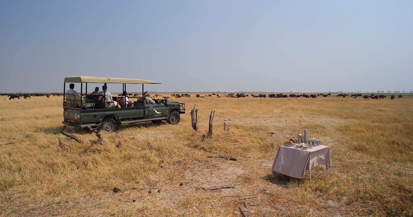 Safari game drive at Savute Under Canvas in Chobe National Park
