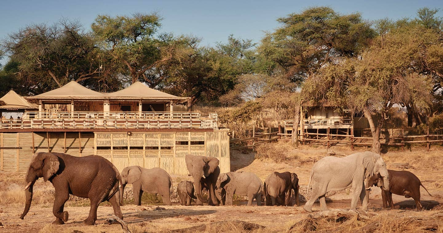 Belmond Savute Elephant Lodge in Chobe National Park - Luxury safari