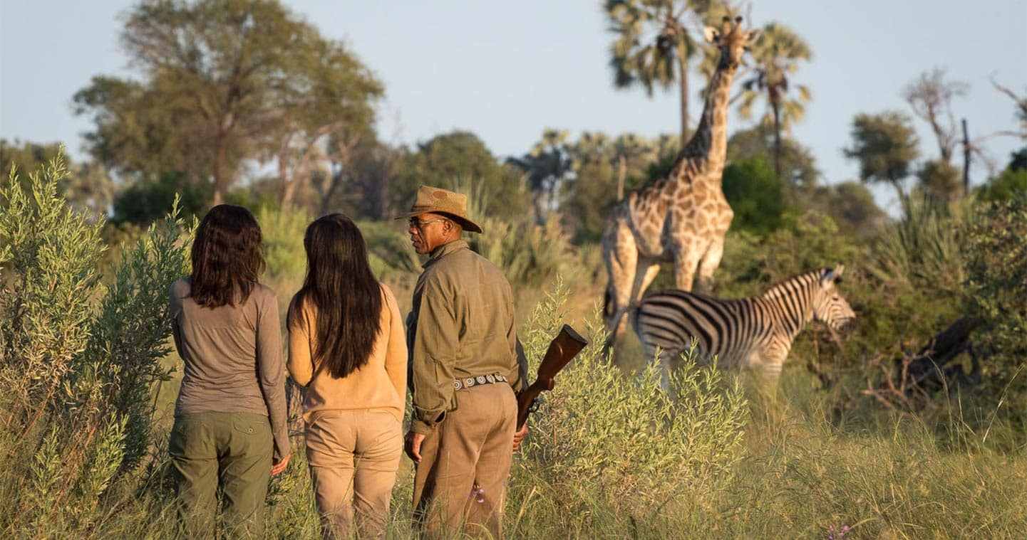 Enjoy the Sunset during a Game Walk in Chobe National Park