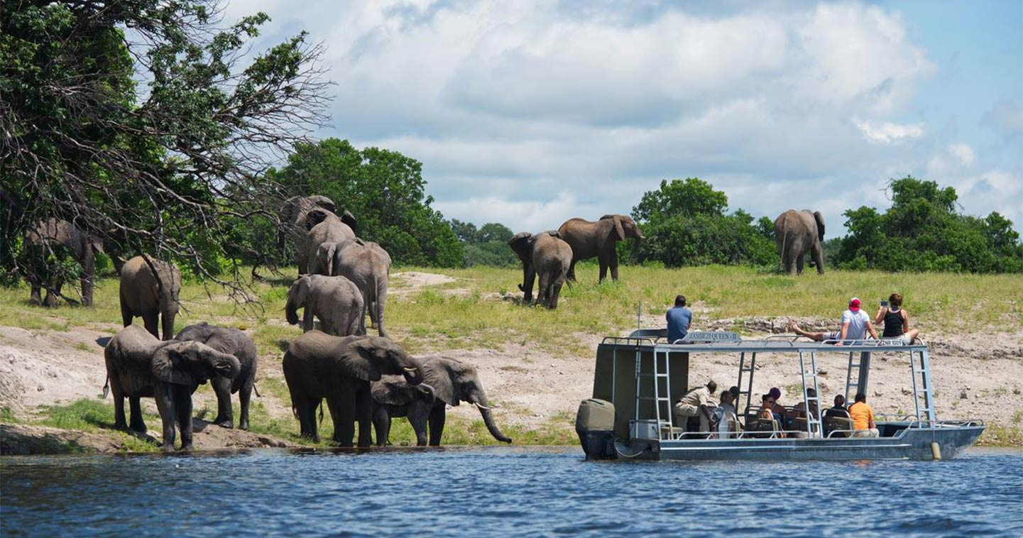 River safari Chobe Zambezi Queen
