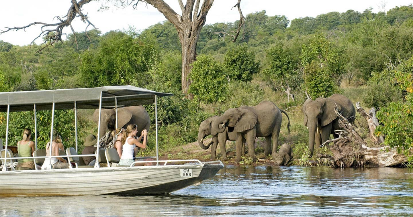 See Wildlife up Close on a Boat safari During your Stay at Sanctuary Chobe Chilwero
