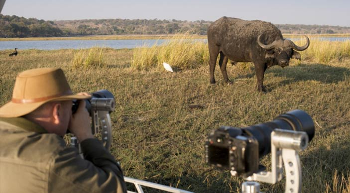 Honeymoon Chobe &Beyond special offer - bride pays 50% less